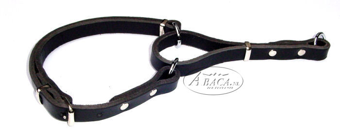image:lederen halsband verstelbaar, met lederen slip